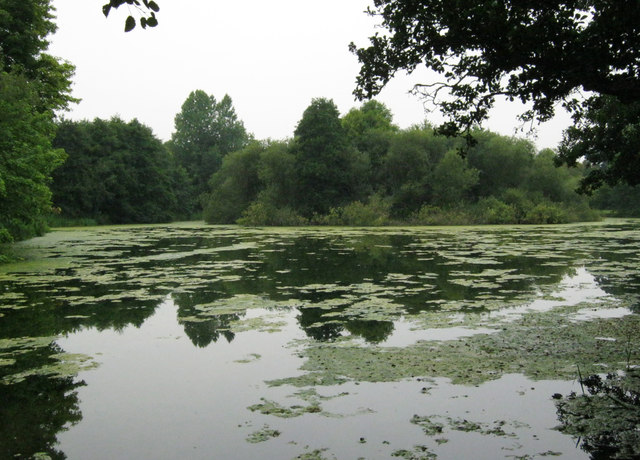 Lake with island at Kingston Maurward