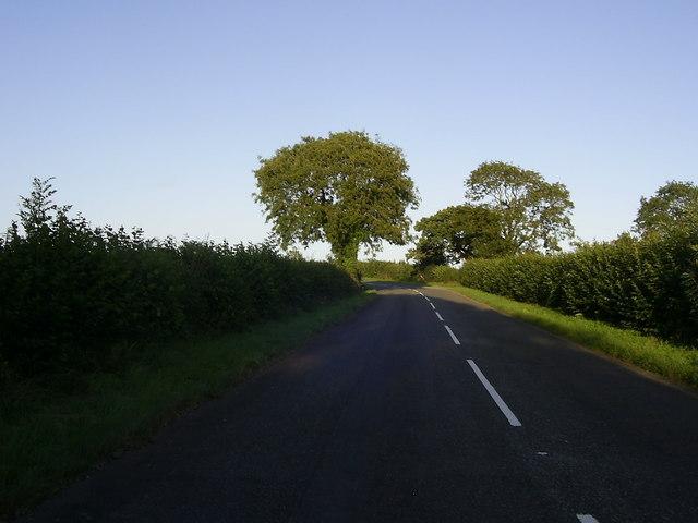 Former A40