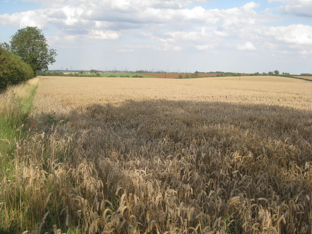 View near Burnham