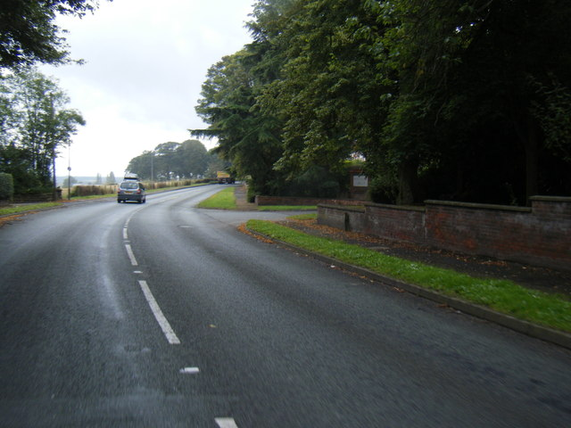 Kingsley Road