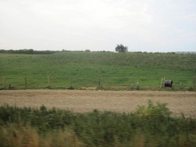 Farm track at Newnham farm