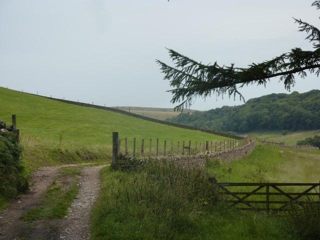 Field track, near Clough Brook