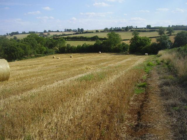 Ravensthorpe Farmland