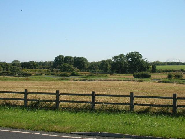 Farmland, Riccall Bridge