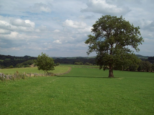 The Midshires Way near Staden