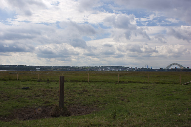 Salt marsh between the St Helens Canal and the River Mersey