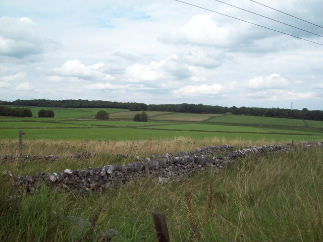 Fields near Dalehead