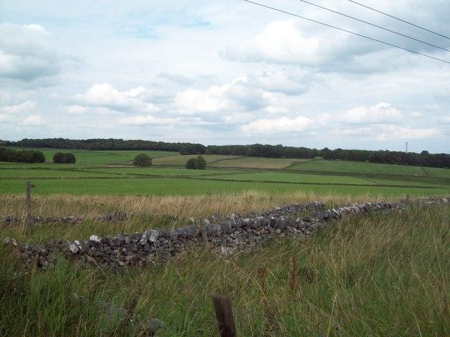 Fields near Dalehead