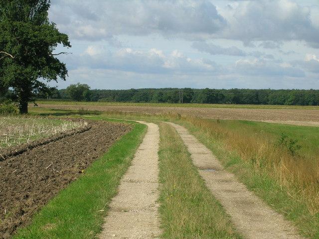 Whinny Lane towards Moor End