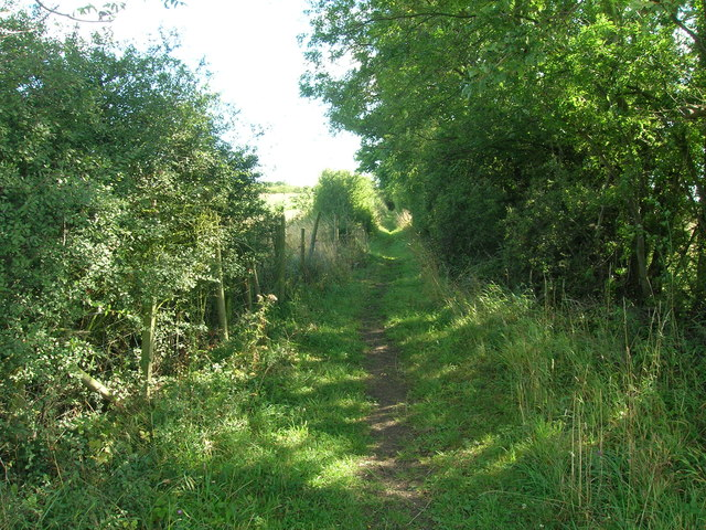 Bridleway near Stillingfleet Mine (disused)