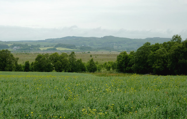 Farmland and Cors Caron near Maes-llyn farm, Ceredigion