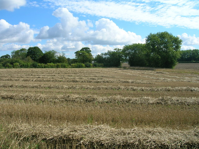 Farmland near Bell Farm
