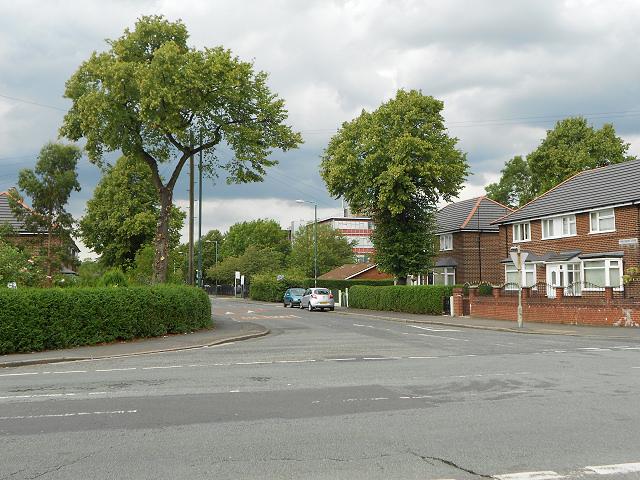 Pink Bank Lane