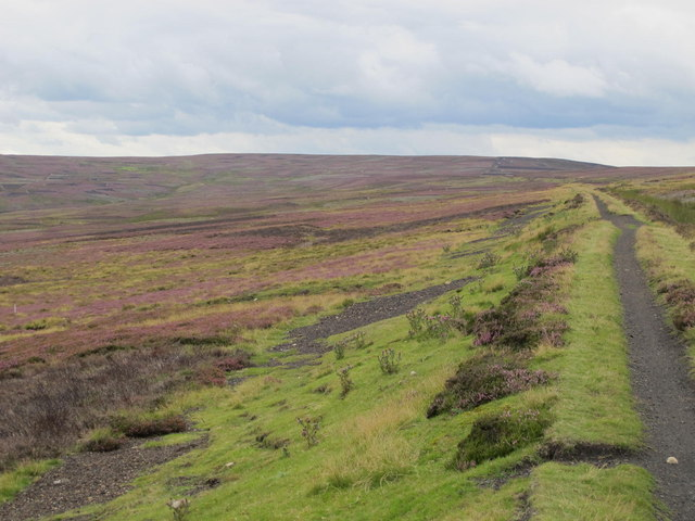 Trackbed of the former Weardale & Rookhope Railway east of Bell's Hill