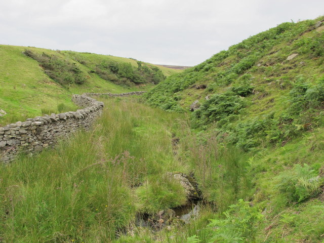 West Whiteley Burn