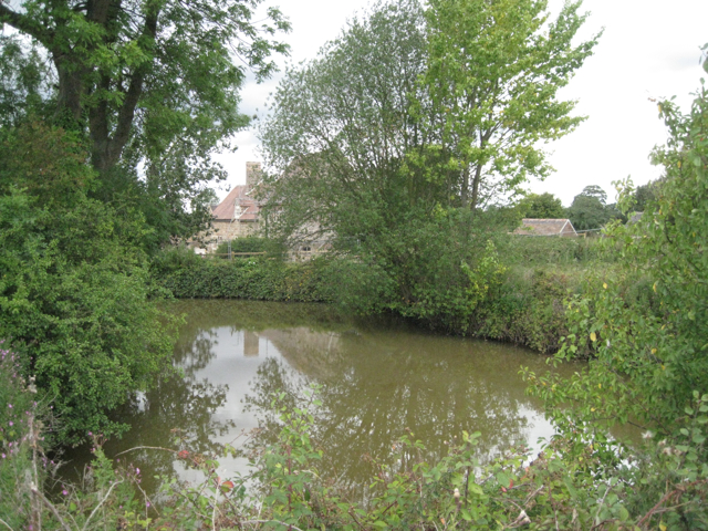 Pond near Green Farm