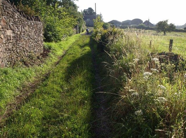 Hill Lane, Rowberrow