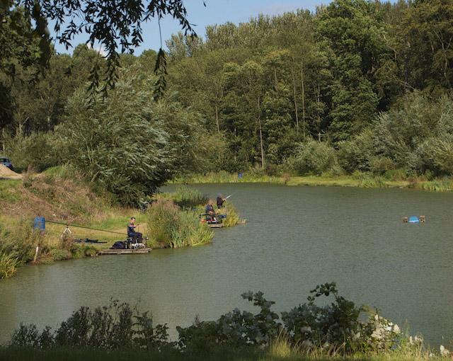Folly Lake at Risby Park