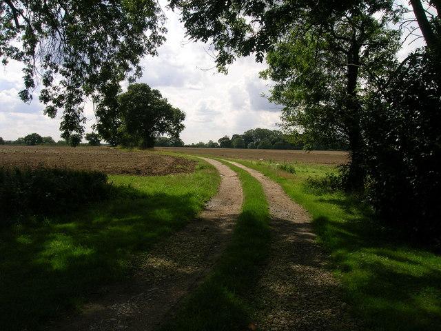 Farm track near North Duffield Lodge