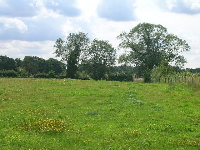 Farmland, Skipwith