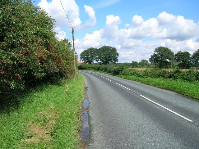 Minor road towards Escrick