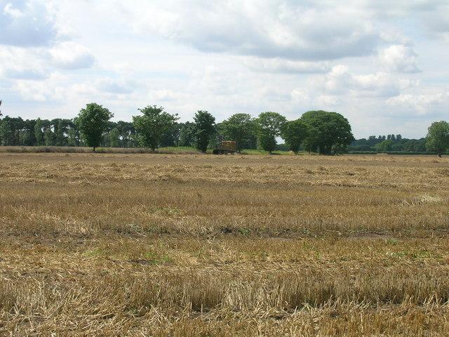 Farmland near Bridge Farm