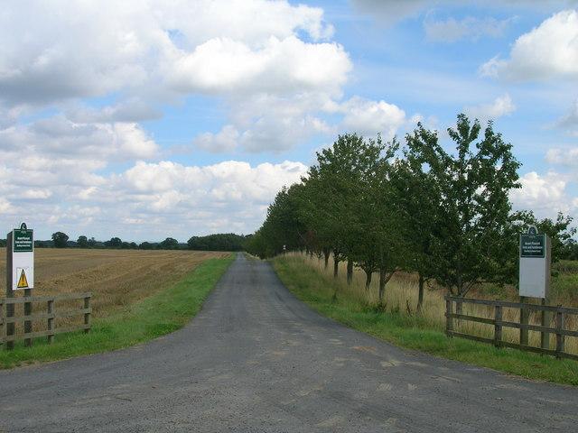 Track to Mount Pleasnat Farm