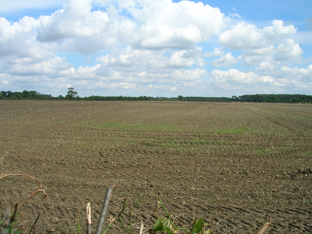 Farmland off Mill Hill