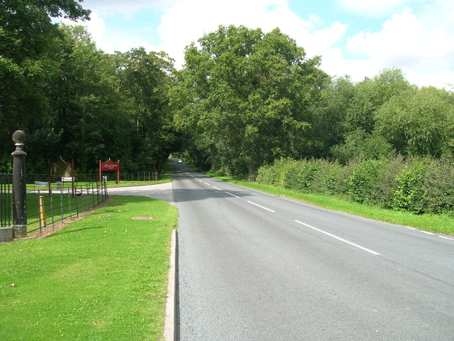 Minor road towards Escrick