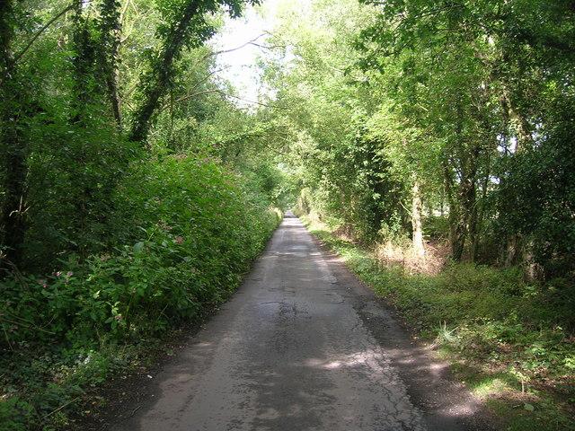 Road to Dodsworth Farm
