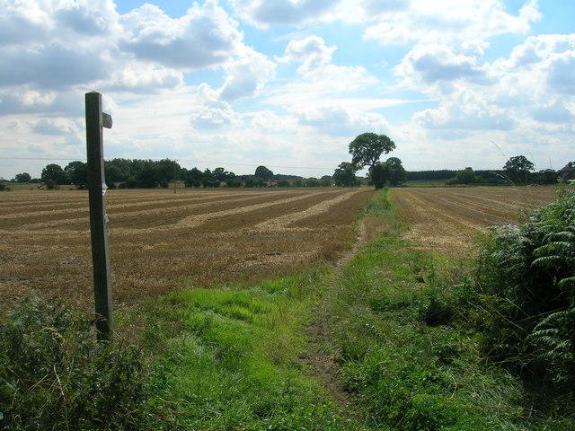 Bridleway towards Warren House Farm