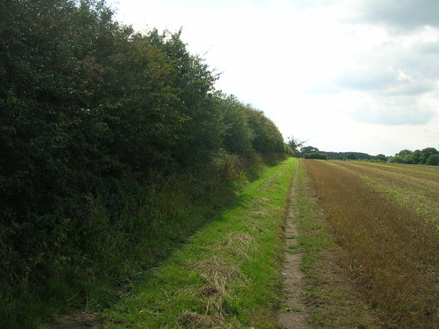 Bridleway towards Warren House Farm