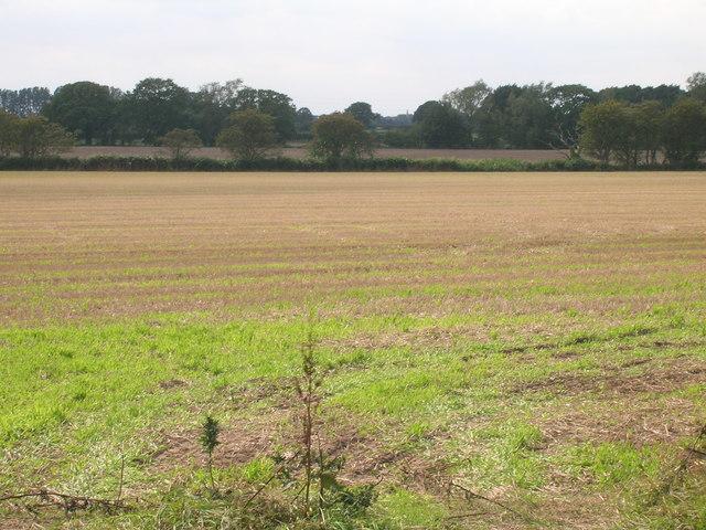 Farmland near Rush Farm