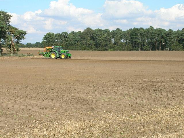 Farmland off Wheldrake Lane