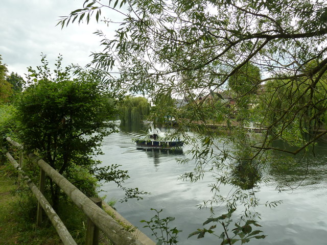Walk along the Thames from Runnymede to Old Windsor (68)