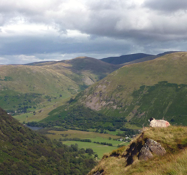 A sheep's eye view of Dovedale