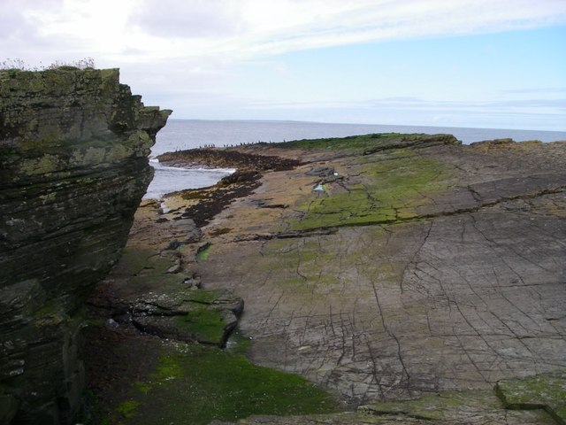 Rock slabs on the more northerly of the Holms of Ire