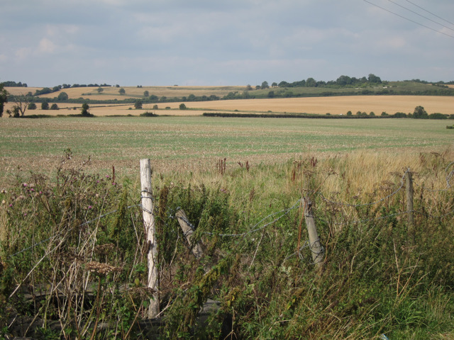 Field off Forstal Road