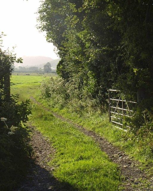 Track near Shipham