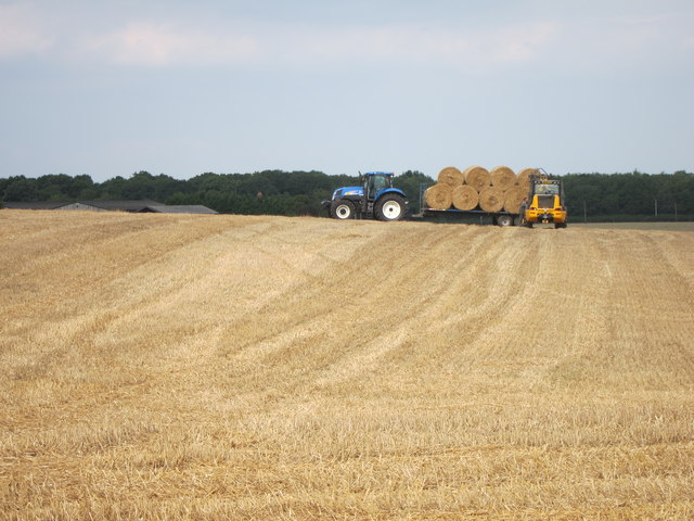 Collecting the bales
