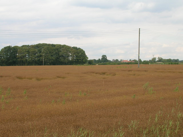Farmland near Keeper's House