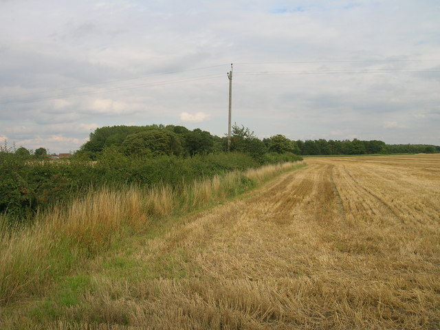 Field boundary off the B1222