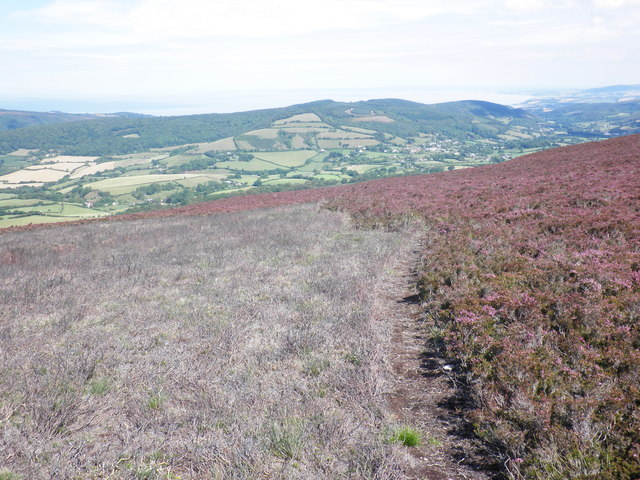 View towards Wootton Courtenay