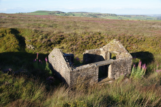 Abandoned hut on Reaps Hill