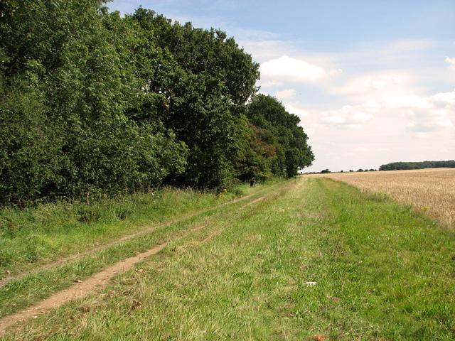 Track skirting Whin Close, Sedgeford