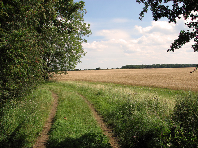 Fields east of Whin Close, Sedgeford