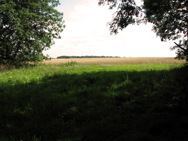 Farmland east of Whin Close, Sedgeford