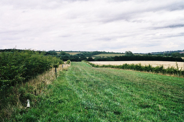 Bridleway between hedges