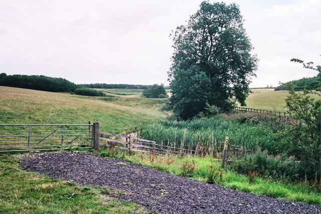 Pond and dam by Leigh Lodge