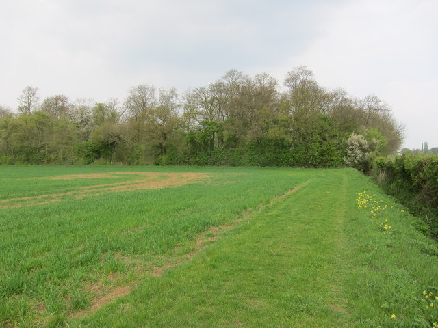 Footpath to Rand's Wood